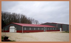 Horse Motels International  Worldwide horse motel directory