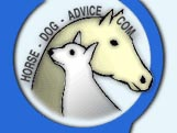 Answers to your horse and dog questions