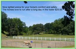 horses - Horse Motels International  Worldwide horse motel directory